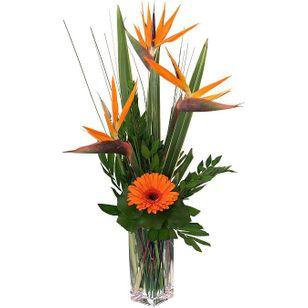 Maui Bouquet ($75.99-$98.99)