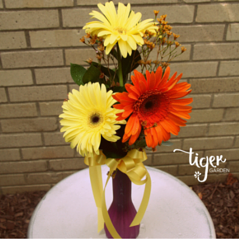 Triple Gerbera Vase Tiger Garden University Of Missouri Florist