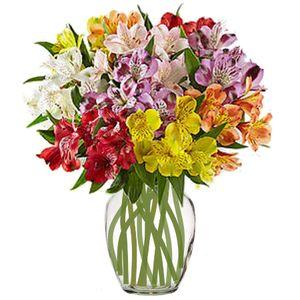 Colorado springs florist my floral shop colorado springs colorado springs florist mightylinksfo