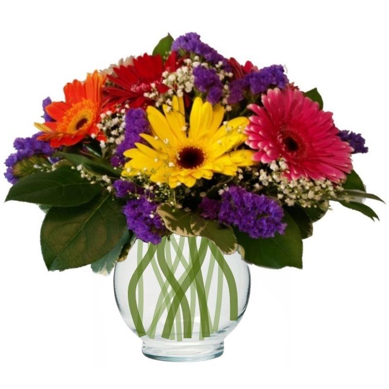 Fiesta colorado springs florist my floral shop colorado springs more views mightylinksfo