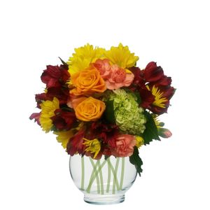 Colorado springs florist my floral shop colorado springs winnie the pooh in colorado springs colorado my floral shop mightylinksfo