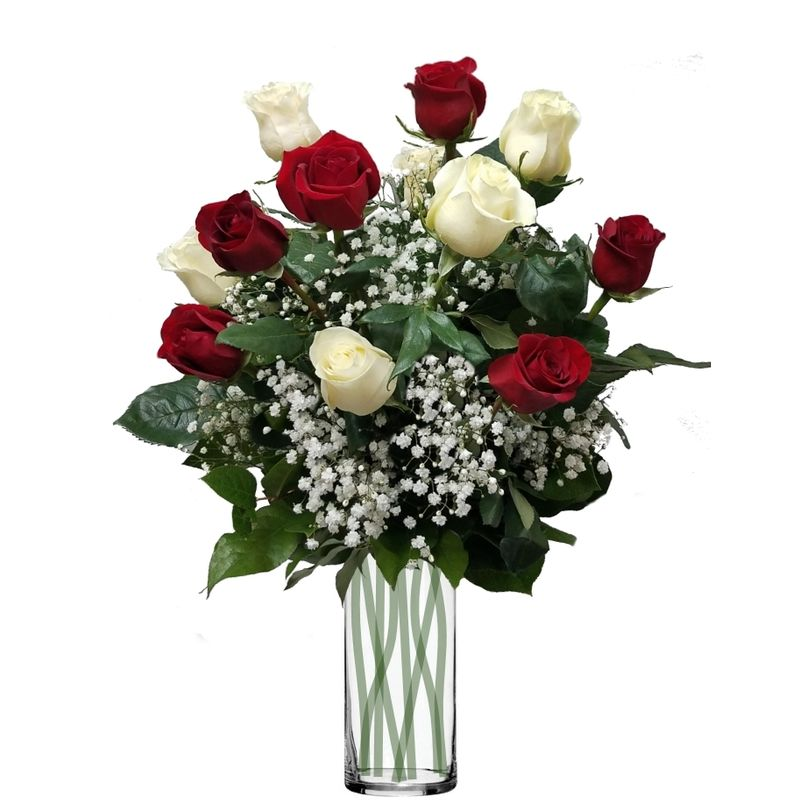 Long Stem Red And White Roses Colorado Springs Florist My Floral