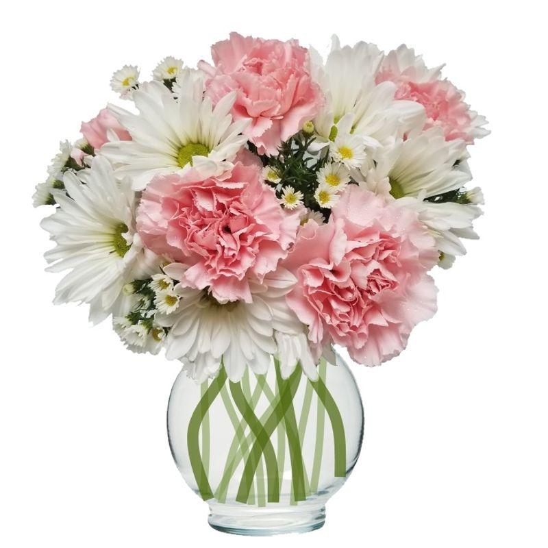 Princess di colorado springs florist my floral shop colorado springs more views mightylinksfo