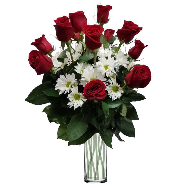 Long stem red roses with white daisies colorado springs florist my more views mightylinksfo