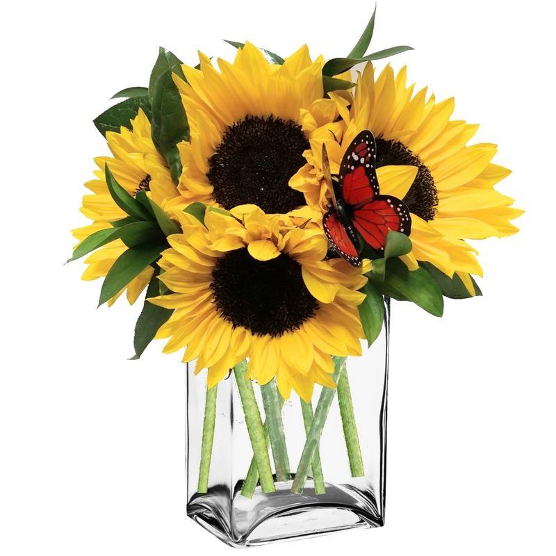 Sunny sunflowers colorado springs florist my floral shop more views mightylinksfo
