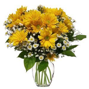 New baby flowers colorado springs florist my floral shop sunshine in colorado springs colorado my floral shop mightylinksfo
