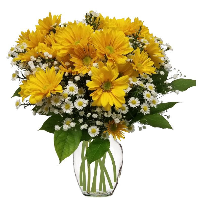 Sunshine colorado springs florist my floral shop colorado springs more views mightylinksfo