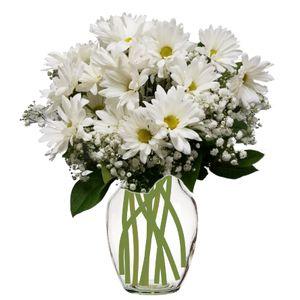 Colorado springs florist my floral shop colorado springs belle in colorado springs colorado my floral shop mightylinksfo