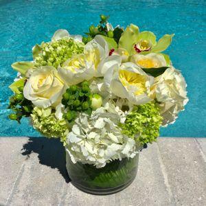 Citrus Surprise in Naples FL, Silver Leaf Flower Studio