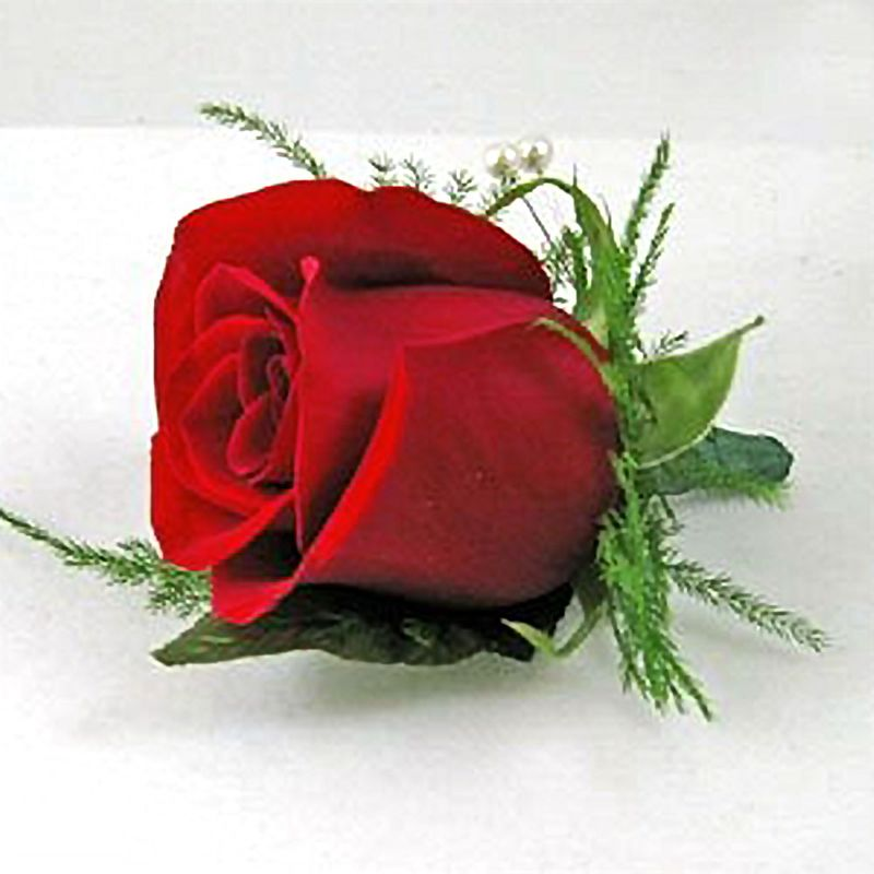 Simply Red Boutonniere By Nature Nook 174 Cleves Oh Florist