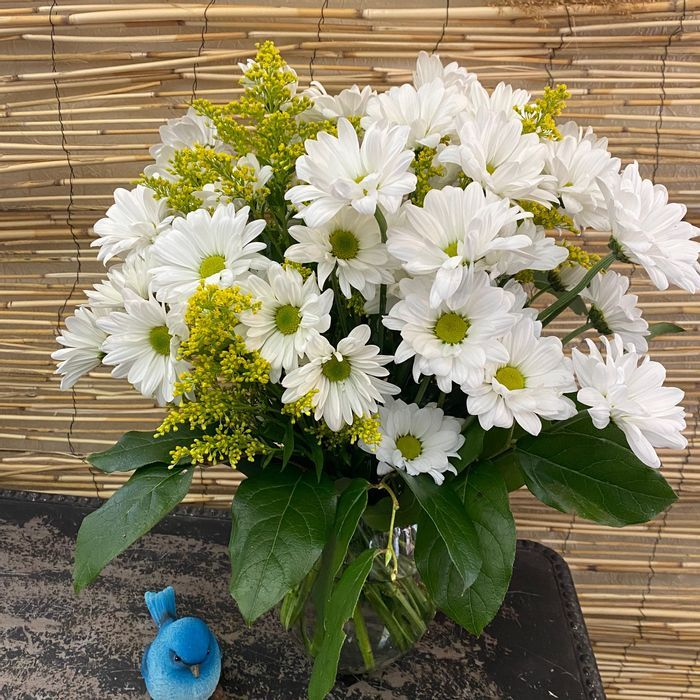 Sharon Nowlan Life of Drafonflies New Smyrna Beach Florist | Local Flower Delivery New Smyrna
