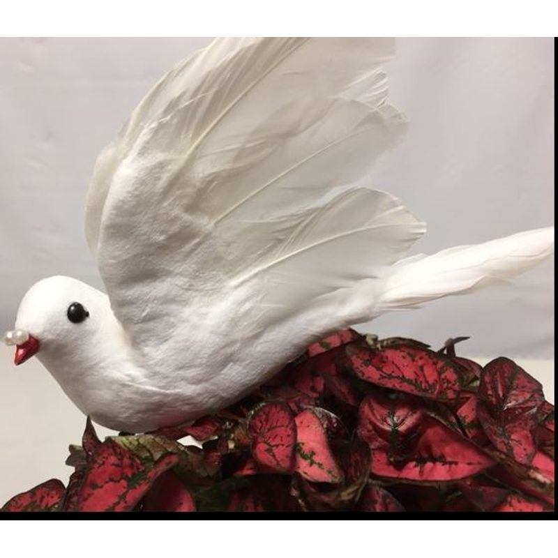 White feather dove tampa florists new tampa flowers more views mightylinksfo