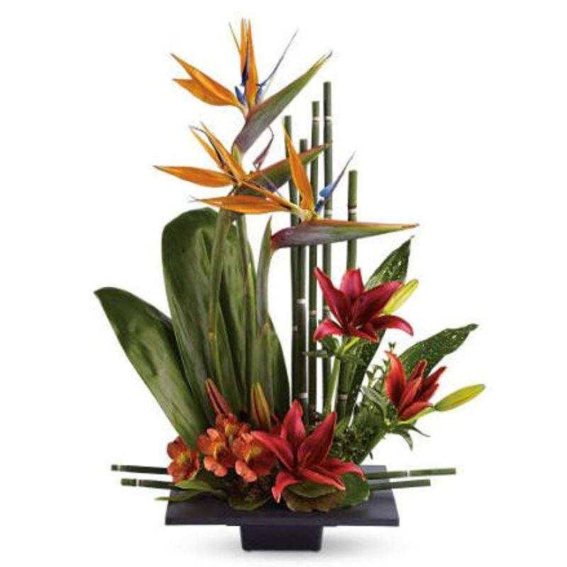 Birds of Paradise Bouquet 2 sizes Tampa Florists - New Tampa Flowers