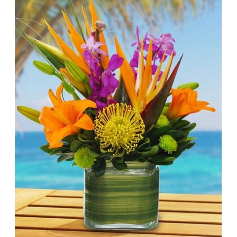 Tropical Vibes Bouquet Tampa Florists - New Tampa Flowers