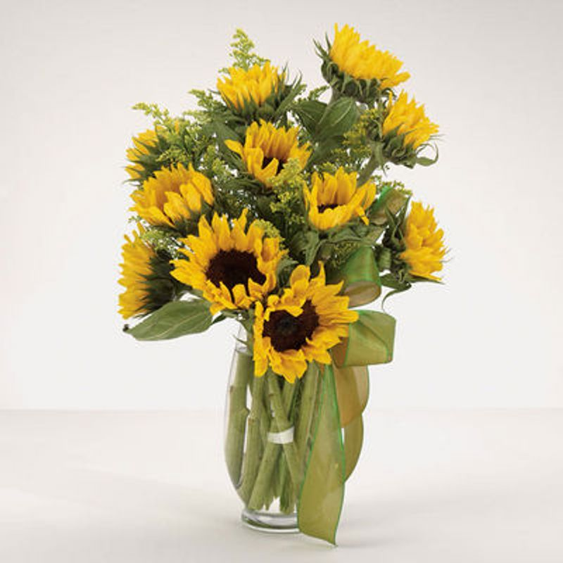 Sunflower Fields 60 Phone Price Rockstar Florist Saginaw Mi