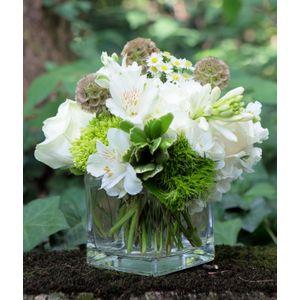 Aspen in Atlanta Georgia, Petals A Florist