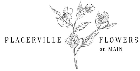 Placerville Florist Placerville Ca 95667