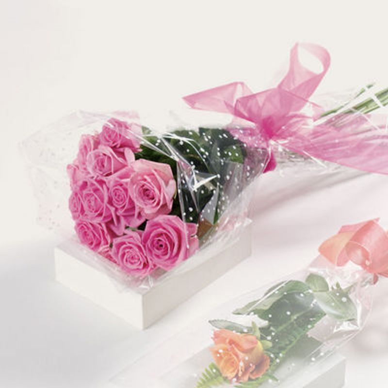 Wrapped dozen pink roses stittsville on k2s 1b8 florist pretty more views mightylinksfo
