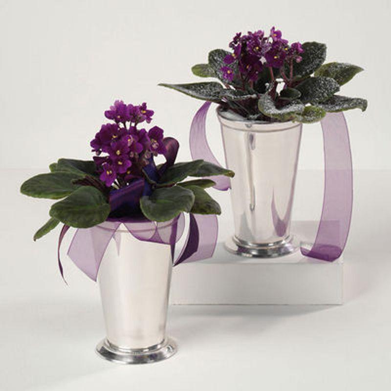 Violets In Silver Vase Puhlmans Flower Shop Carnege Pa 15106