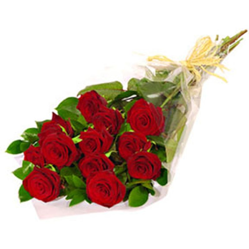Wrapped Dozen Red Roses North Manchester Florist I North Manchester