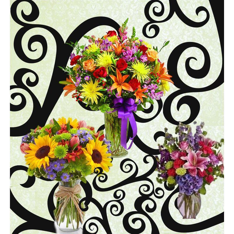 Carnival Of Color Backyard Garden Florist Roseboro Nc