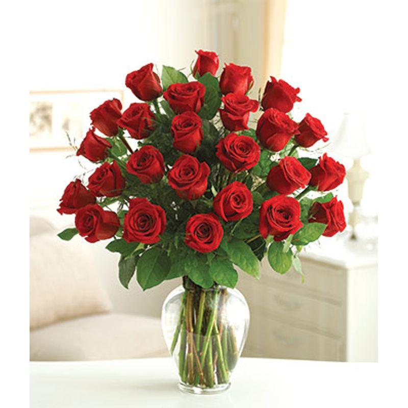 Dazzling Two Dozen Rose Bouquet Backyard Garden Florist Roseboro Nc