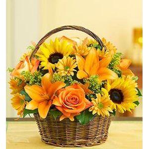 Fall flowers backyard garden florist roseboro nc fall basket in roseboro nc backyard garden florist mightylinksfo