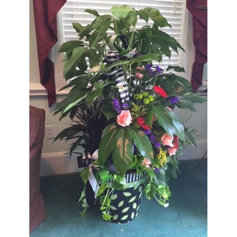 Art Planter Backyard Garden Florist Roseboro Nc