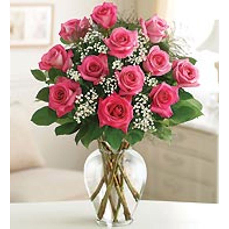 Pink roses rosebud flower shop erie pa 16503 more views mightylinksfo