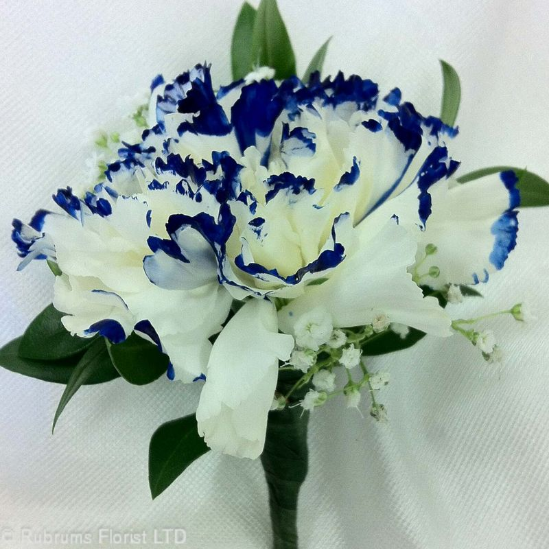 WHITE CARNATION W/ ROYAL BLUE TIP BOUTONNIERE Rubrums Florist ...