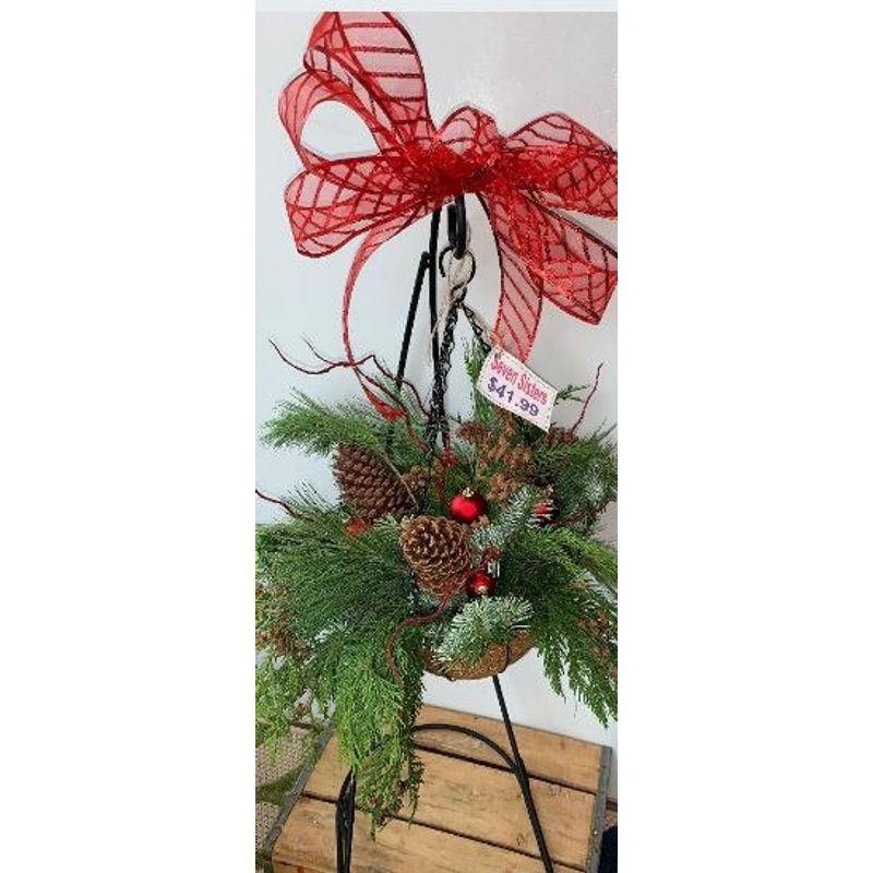 Christmas Hanging Baskets.Christmas Hanging Basket Seven Sisters Florist Cicero In
