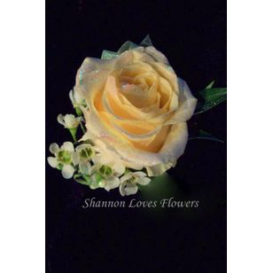 classic yellow rose boutonniere shannon loves flowers albuquerque nm