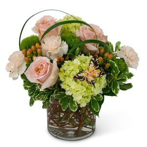 Siloam springs florist siloam flowers gifts song of gratitude in siloam springs ar siloam flowers gifts mightylinksfo
