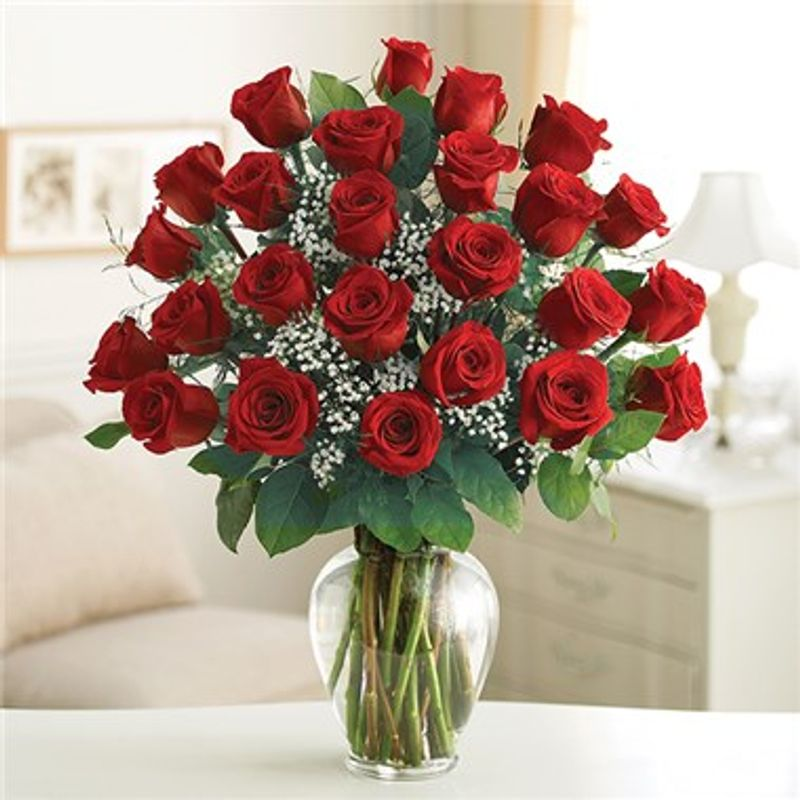 Two Dozen Red Rose