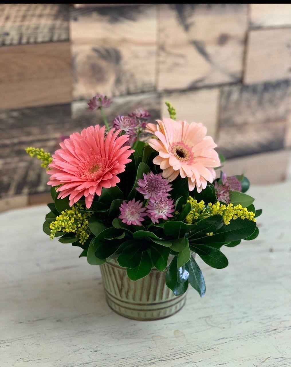 Short And Sweet Saint Joseph Florist Garden Gate Local