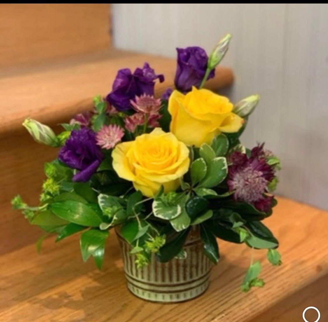 Purple Darling Saint Joseph Florist Garden Gate Local
