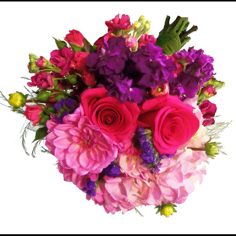 Lady love song enchanted florist taos taos nm flower shop more views mightylinksfo