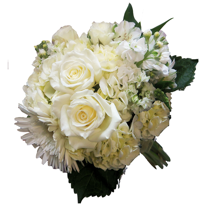 White sand beach enchanted florist taos taos nm flower shop more views mightylinksfo