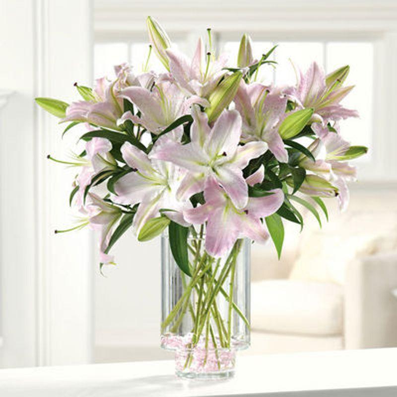 Ooh La La Lilies The Milam House Frankfort Ky 40601