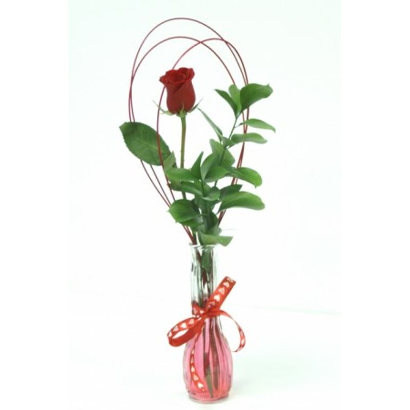 Single Rose In Vase Chadron Ne 69337 Florist The New Leaf