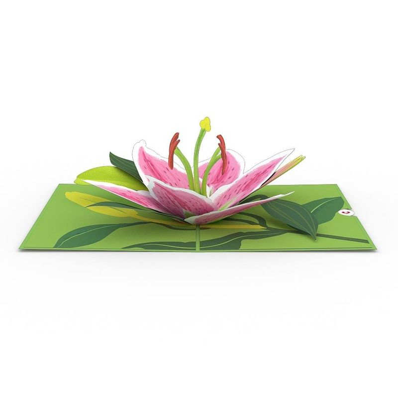 Lovepop Greeting Card Lily