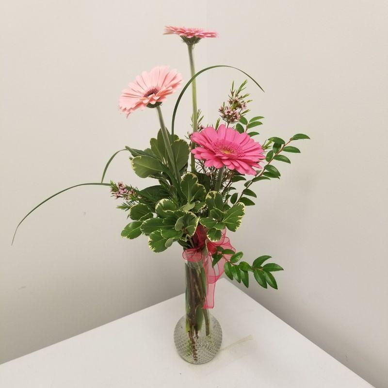 Bud Vase Of Gerbs Benzonia Michigan Florist Victorias Floral Design