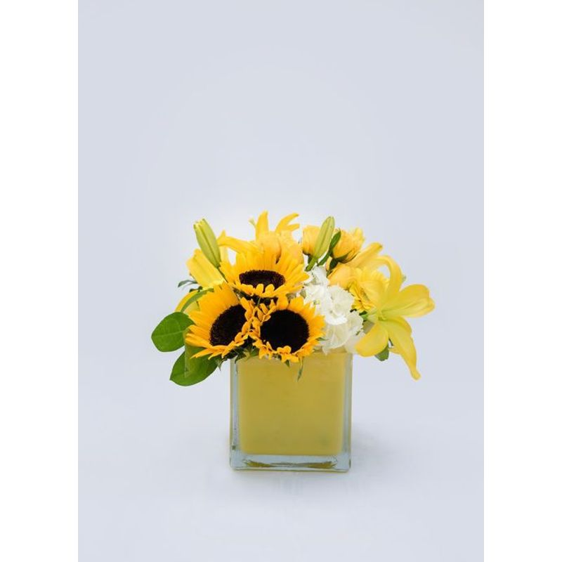 Oh Sunny Day.Oh Sunny Day Wild By Nature Flowers Gifts More