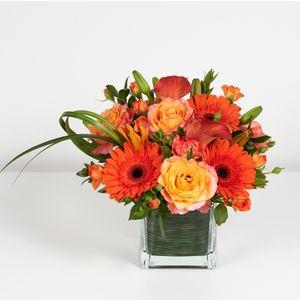 Lees summit mo florist all abloom floral design tangerine twist in lees summit mo all abloom mightylinksfo