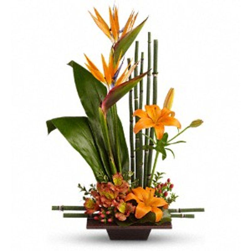 Teleflora S Exotic Grace Montgomery Al Florist Flowers By
