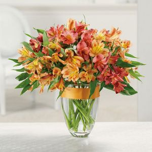 Tulsa florist westside flowers gifts awesome alstromeria in tulsa ok westside flowers gifts mightylinksfo