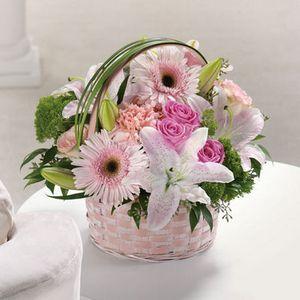 Basket Of Love in Columbus OH, All InBloom Flowers