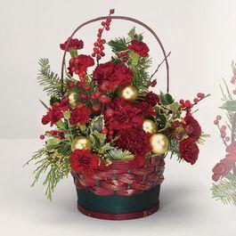 Winter Flowers Bulverde Tx Florist Plantiques Floral