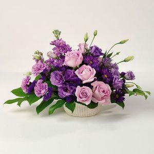 Purple Pleasures in Columbus OH, All InBloom Flowers